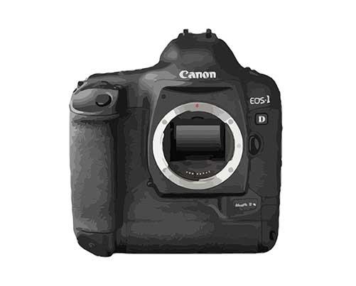 Canon EOS 1D Mark II N Reparatur