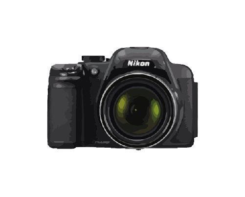 Nikon Coolpix P520 Reparatur