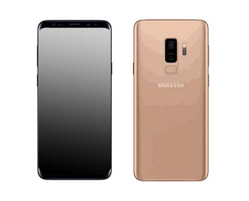 Samsung Galaxy S9 Plus SM G965F Reparatur